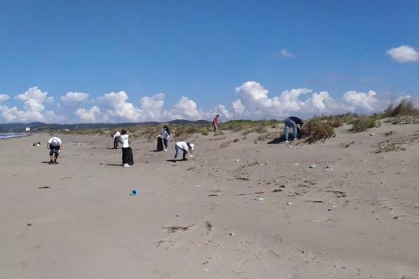 Spille beach (Albania), Fifth beach cleaning operation